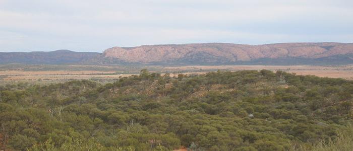 Scenery of Harts Range West
